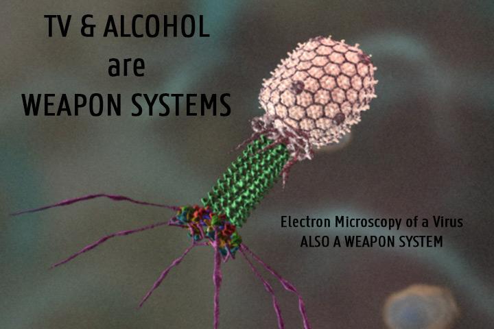 VirusWeaponSystem